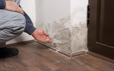 How to Hire Water Damage Restoration Services in Florida